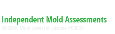 HNST Mold Inspections