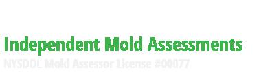 HNST Mold Inspections NJ NY