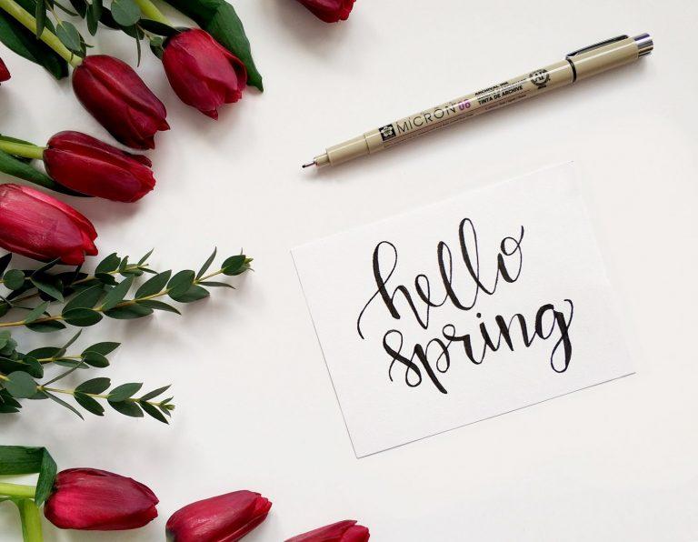 spring tips for preventing mold
